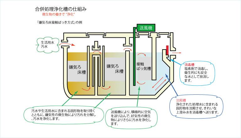 合併処理浄化槽の仕組み